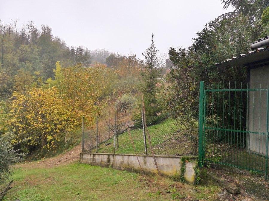 Giardino e bosco